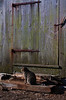 <center>Guard Cat  <br>Coggeshall Farm - 29 January 2012<br>Rhode Island Photo Safari Meetup Group<br>Bristol, Rhode Island</center>