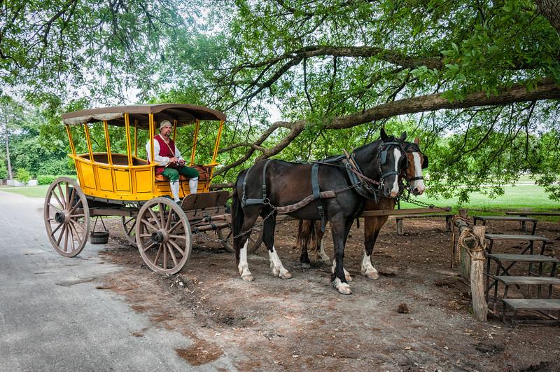 Coachman Reenactor, Colonial Williamsburg, Virginia
