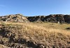 """Badlands near Glendive, MT<br /> Excellent TED talk intro to dino fossil hunting, by Dr. Kenneth Lacovara<br /> <a href=""""https://www.youtube.com/watch?v=o1Z4F4e2Bw4"""">https://www.youtube.com/watch?v=o1Z4F4e2Bw4</a>"""