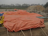 Thermo tarpaulin from Henk K. Frost protection (night frost - 4 C)