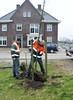 "Planting a new oak tree in ""the front garden"":-)"