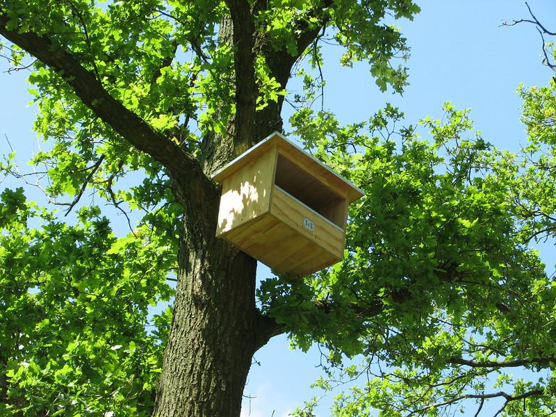 Nr 14, bird home for Kestrels, (NL: Torenvalk nestkast)