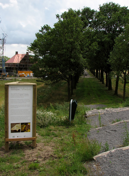 Information signe about insects/butterflies in Sonnius park