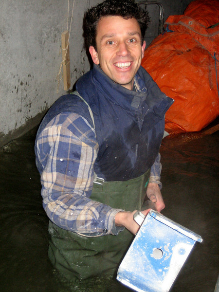 Robert removing the stamps in the cellar