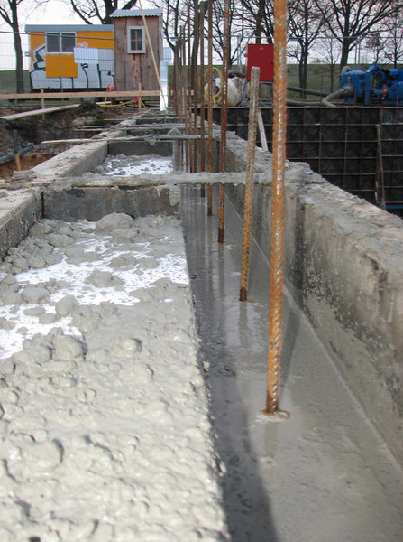 Pour concrete in the main cellar mould (with styrofoam forms)