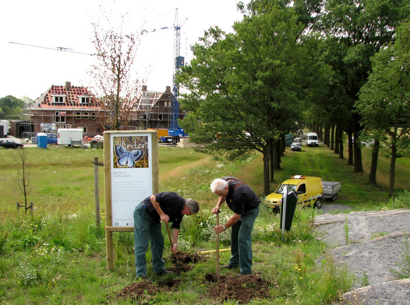 Placing of a information signe about insects/butterflies in the front garden :-))