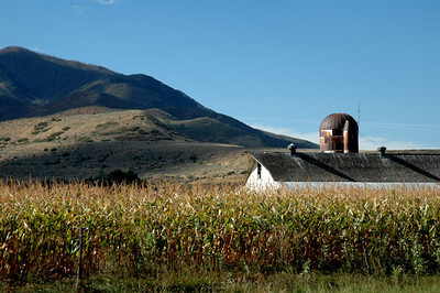A farm in Payson, Utah