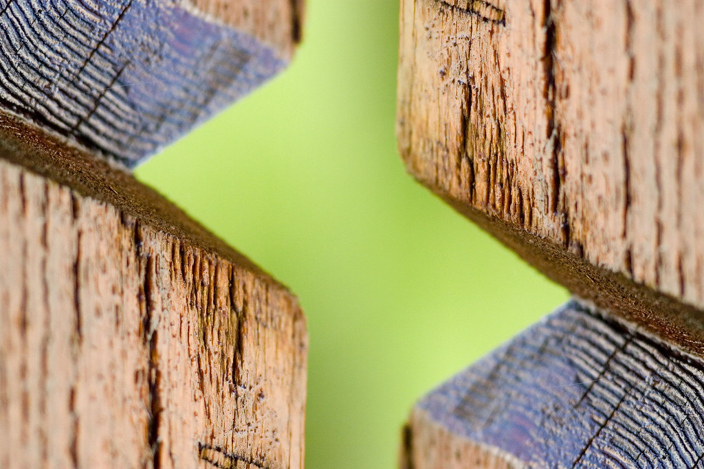 """Green Wood II""<br /> Assignment:  Abstract"