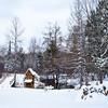 Montmorency County, Michigan, November, 2014