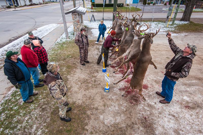Buck Pole, Atlanta, Michigan, Novermber 15, 2014