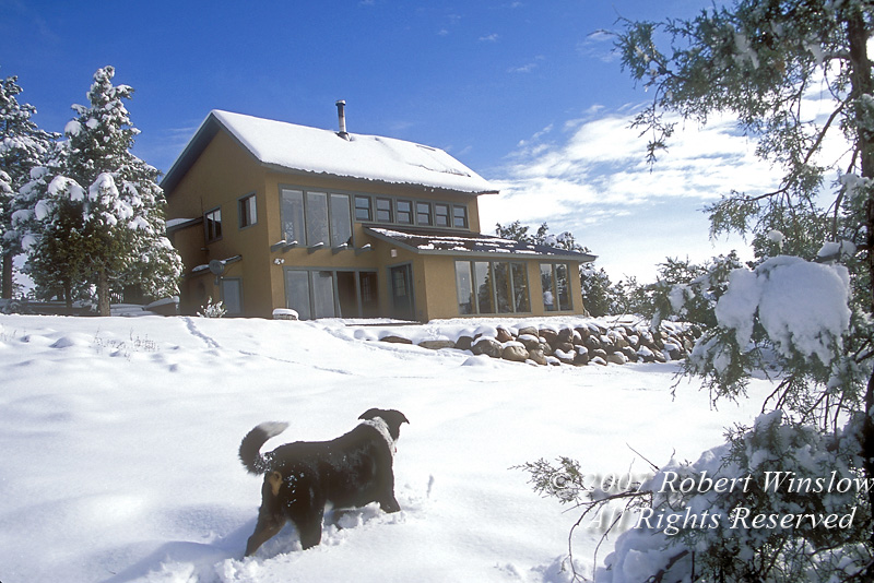 Property Released, Passive Solar House with Solar Panels for Hot Water, Durango, Colorado, Winter, Dog