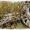 Abandoned Wagon, El Rancho de la Golondrinas, Los Pinos Road, Santa Fe, New Mexico