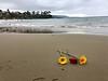 Sue's birthday, Crescent Bay, Laguna Beach, CA<br /> October 9, 2019