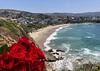 5-year anniversary of Sue's passing<br /> Crescent Bay, Laguna Beach<br /> June 19, 2019