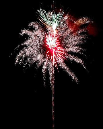 Fireworks As Flowers