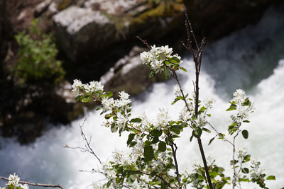 2011_07_07 Wyoming 178
