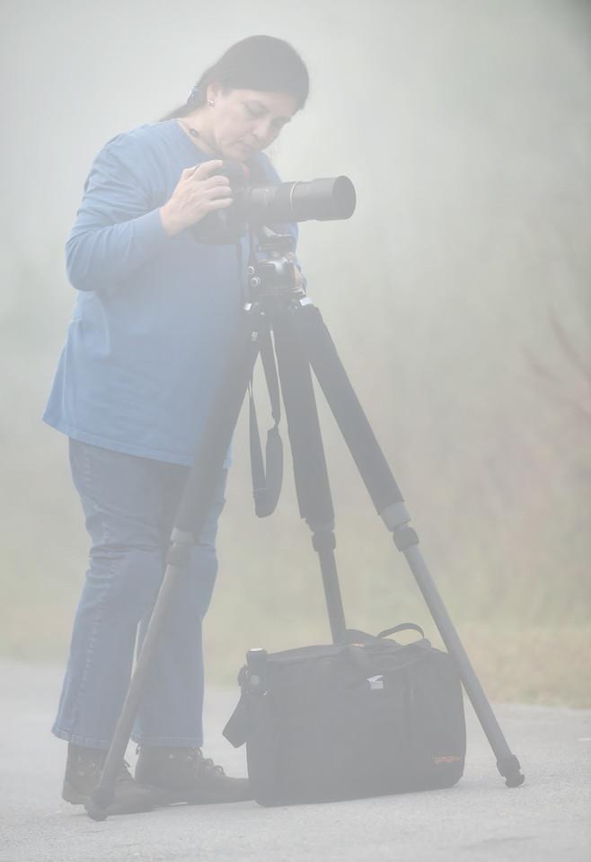 Vilma on a foggy dawn
