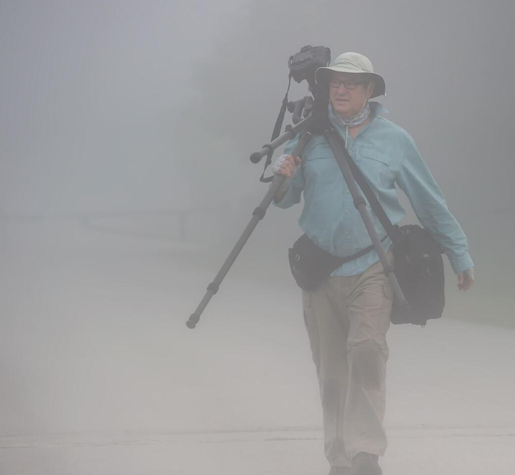 Ricardo on a foggy dawn