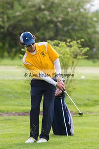 golf201412417