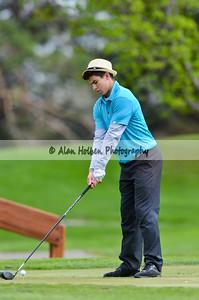 golf201412393