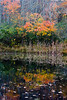 <center>Small Pond<br><br>Glocester, Rhode Island<br><br>This small pond made for great fall reflections.</center>