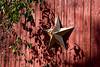<center>Star <br><br>Glocester, Rhode Island
