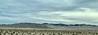 On I-15, heading to Nevada