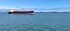 Container ships anchored in the channel.<br /> Catalina Express, Long Beach to Avalon<br /> May 16, 2021