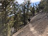Rick and Megan on the trail<br /> Ancient Bristlecone Pine Forest