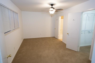 Master BR, new blinds and ceiling fan