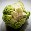 Brussels sprout. More macro photography fun.