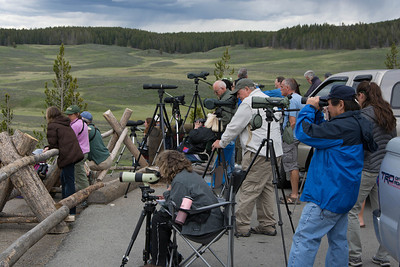 Wolf Watchers at Grizzly Pull off, waiting for wolves to show.