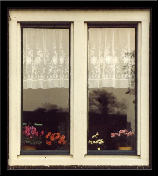 Flowers in window.  Amsterdam.  1982.