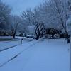 Snow - February 14, 2004