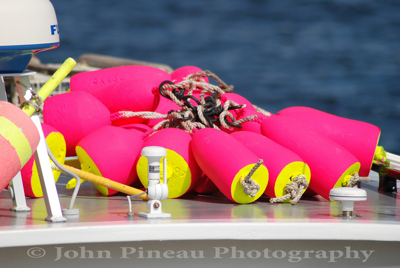 Bright Buoys - Owls Head, Maine