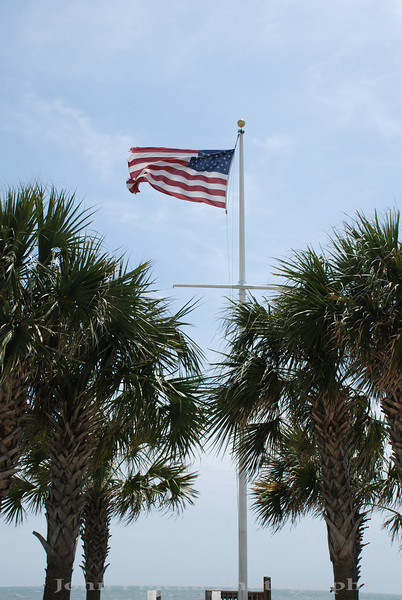 Flag and palms - Myrtle Beach, South Carolina