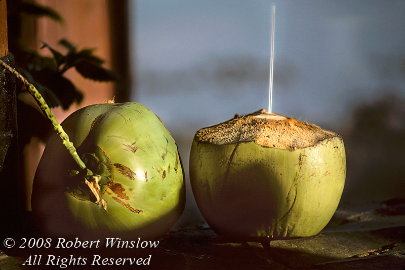 Two Coconuts, One with a Straw
