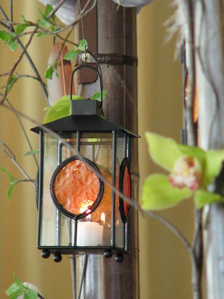 lamp and trellis jpg