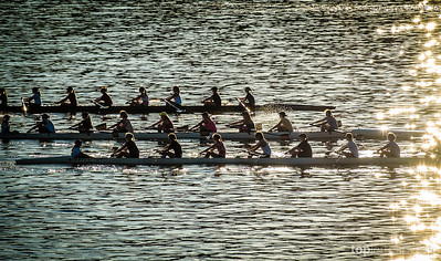 Rowers taken on the Willamette River in Portland during the 2013 Worldwide Photo Walk.