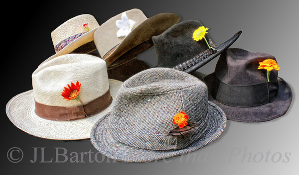 "Hats Off! 2010-07-20  Something different for me today.  Working up a few shots for the monthly photo challenge of a photo club here in Vienna.  This month's theme is ""still life"".  Since I have the hats (and many more), the idea for this photo came to me.  I have another week until the deadline, so I may play with this idea a bit more.  P.S.  This is less than half my hats.  The flowers are fresh from our garden.  Thanks to all for the encouraging comments on yesterday's photo.  wonderful group of people."