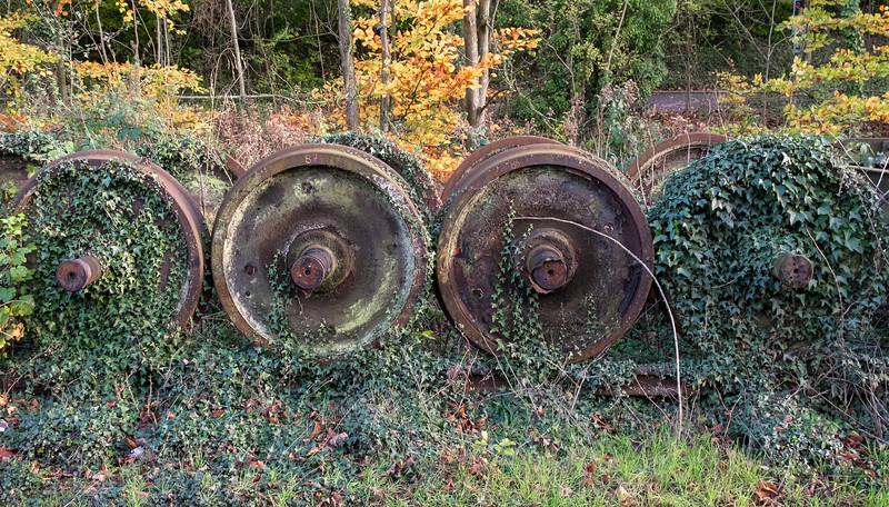 The Cultivation of Railway Wheels - Pickering North Yorkshire UK 2017