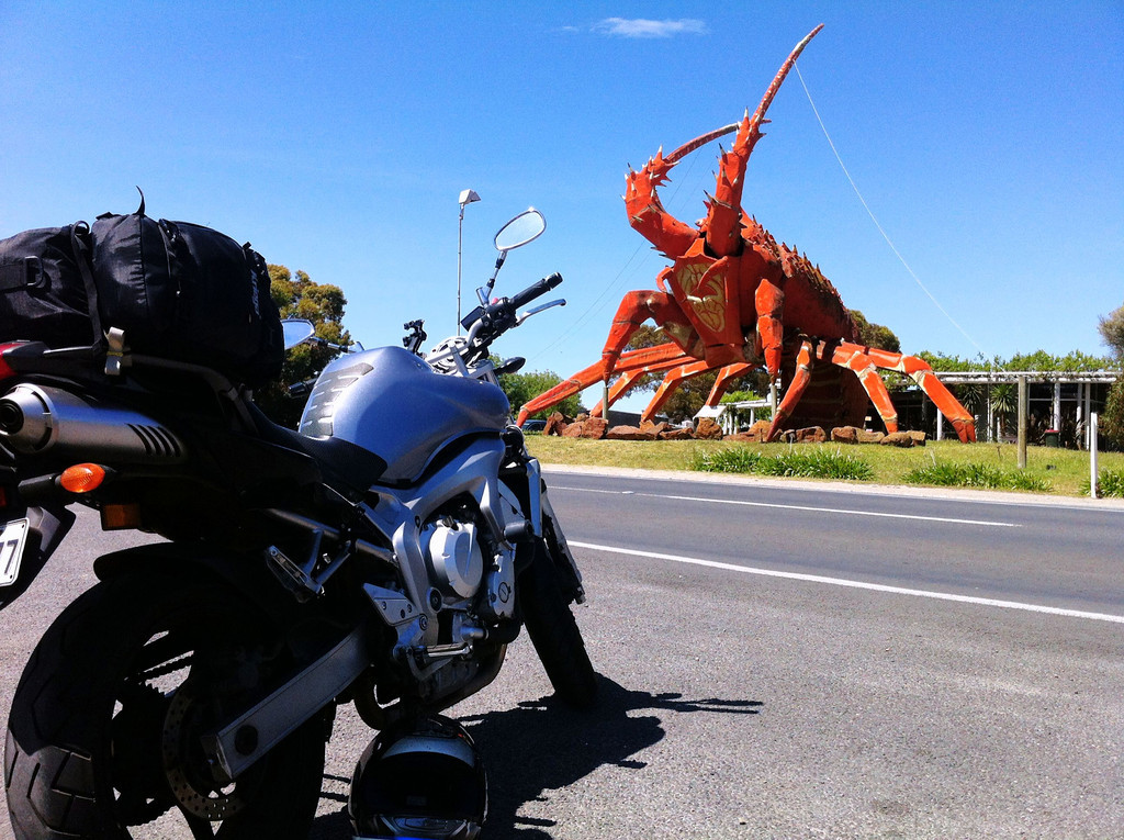 That is a big lobster