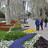Beth and Yasamin enjoy the floral display in Gulhane Parki
