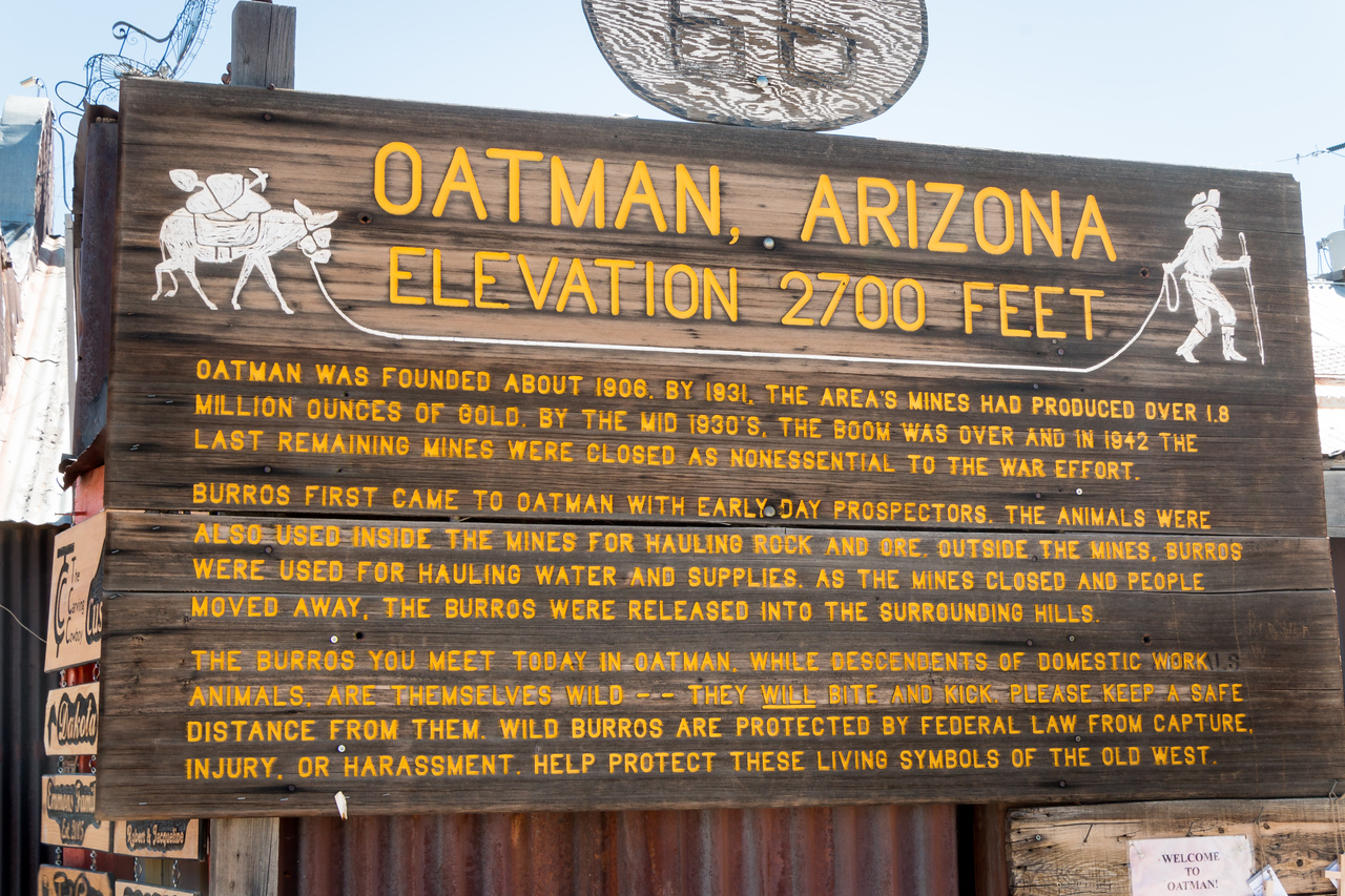 In its heyday, from the early 1900s to the 1940s, Oatman and the nearby town of Gold Road were the largest producers of gold in Arizona.