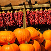 New Mexico Pumpkin Patch, Velarde, New Mexico