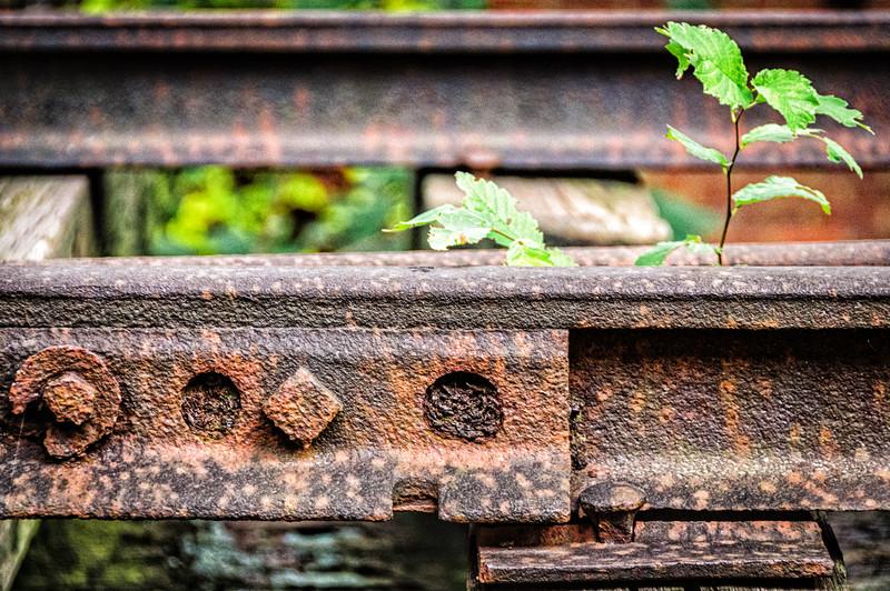 Abandoned Railroad Rrack, Savage Mill, Savage, Maryland