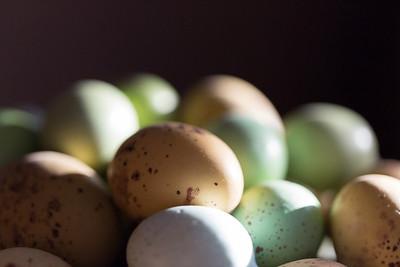 2014_03_04 Eggs 001