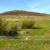 Foeldrygarn,Preseli Hills
