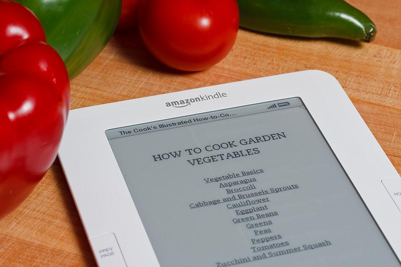 Kindle2 (2 of 3)