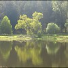 2014-09-30_Lake#2_Willow_01-copy